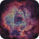 NGC 2237 - Rosette Nebula - V3,                                VuurEnVlam
