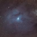 Rho Ophiuchus Nebula - IC4604 in LRGB 60:40:40:40m,                                David Nguyen