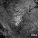 NGC2264,                                Francesco di Biase