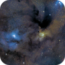 IC 4604 and friends ... suite,                                paddy36