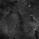 IC 1396,                                Felix