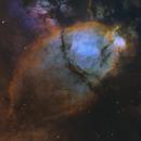 The Fish Head Nebula - Full SHO Palette,                                Teagan Grable