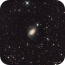 The Cannibal Galaxy: NGC 1512,                                Russ Carpenter