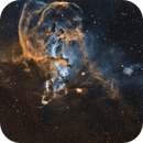 NGC 3576 The Statue of Liberty Nebula,                                Tom Peter AKA Astrovetteman