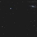 Leo Triplet (M65, M66, NGC 3628),                                HekelsSkywatch