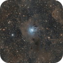 Iris Nebula,                                Tristan Campbell