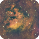 NGC7822: The Meddling Squirrel (HNSO),                                orangemaze