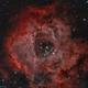 Caldwell 49 The Rosette Nebula,                                Chuen Chung Chui