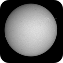 Sol 26-5-20 Ha,                                Steve Ibbotson