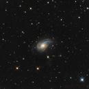 NGC 772,                                rflinn68