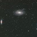 M81/M81,                                Thilo Frey