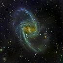 NGC-1365 Spiral Galaxy,                                Miles Zhou