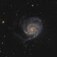 M 101 LRGB,                                Paul Muskee