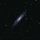 NGC 253 - Sculptor Galaxy 1st light,                                bbonic