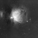 Orion Nebula in Hydrogen Alpha,                                Neil Winston