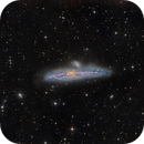 Catch the Whale :-) NGC 4631,                                zirl