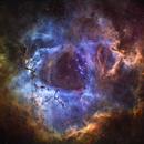 The Rosette Nebula,                                Manuel Huss