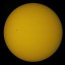 Sunspot Group AR2778,                                Steven Bellavia