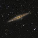 NGC 891,                                Olly Penrice