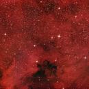 NGC 7000,                                Greg Polanski