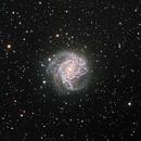 M83 Southern Pinwheel Galaxy,                                Greg McCall