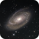 Bode's Galaxy ,M81,                                CsabaTorma