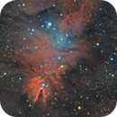 NGC 2264 with Cone Nebula, Christmas Tree Cluster and Fox Fur Nebula,                                Henning Schmidt