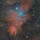 NGC 2264 with Cone Nebula, Christmas Tree Cluster and Fox Fur Nebula,                                Henning Schmidt