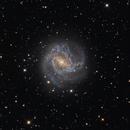 M83,                                Dean Schwartzenberg