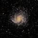 Fireworks Galacy NGC 6946,                                Cheman