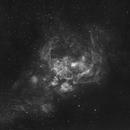 NGC 6357  The War And Peace Nebula,                                APshooter