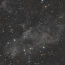 LBN 406 - The Draco Nebula,                                Austin Sherrin