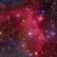 IC2177,                                David Cheng
