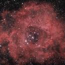 Rosette Nebula,                                Mario Lauriano