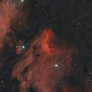 IC5070 - Cygnus,                                Emmanuel Fontaine