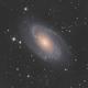 M81 LRGB,                                Blake Berge