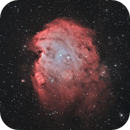 The Monkey Nebula,                                Chris Parfett @astro_addiction