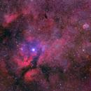 Gamma Cygni, Sadr, & The Crescent Nebula,                                David McGarvey