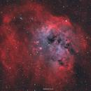 IC410 - Tadpole Nebula,                                Henrique Silva