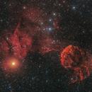 IC443 Jellyfish Nebula,                                Toshiya Arai