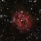 IC 5146 Cocoon  Nebula,                                Cheman
