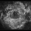 Rosette Nebula in Ha,                                Josh Smith