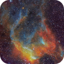 Around Perdition's Flames -NGC 3572,                                  Andys Astro