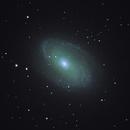 M81, Bode's Nebula,                                Darmok