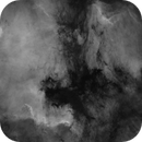 NGC7000 and friends,                                georgian82