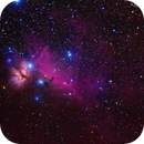 The Horsehead, only 9-minutes integration time,                                Roger Clark