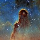 Elephant Trunk Nebula, IC 1396, Hubble Palette, Tone Mapped Image,                                Eric Coles (coles44)