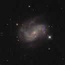 NGC 4051,                                Madratter