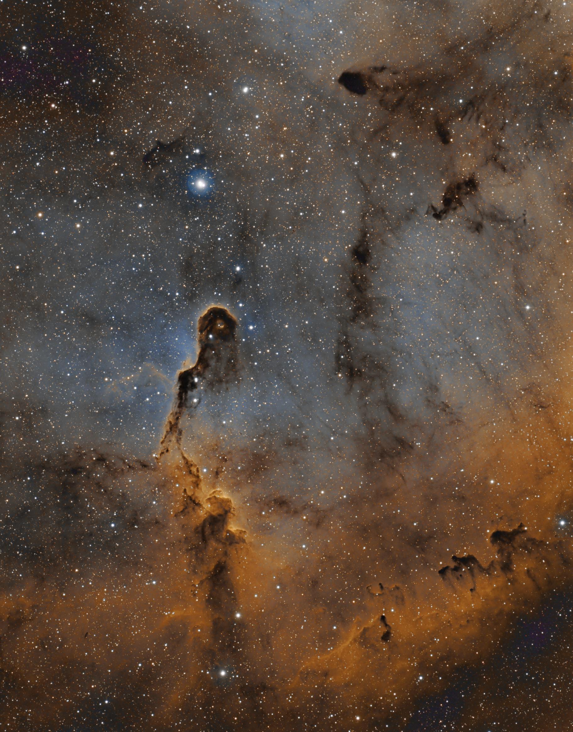The Elephant Trunk Nebula in Narrowband,                                Sinan Arkin