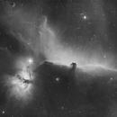 Alnitak nebula complex in Hydrogen Alpha,                                  Charles Wolfe